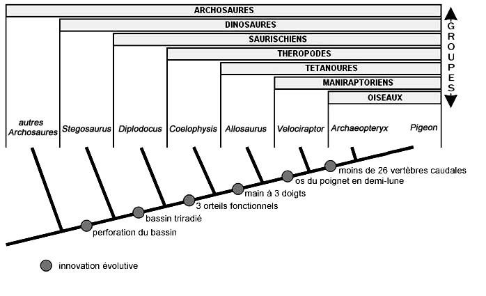 archosaures
