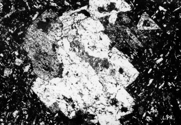 andesite-oligoclase1