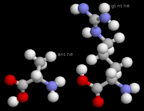 rastop molécules gratuit