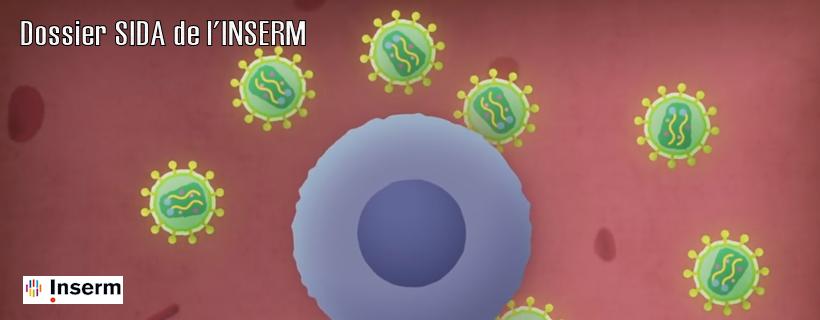 Dossier SIDA de l'INSERM