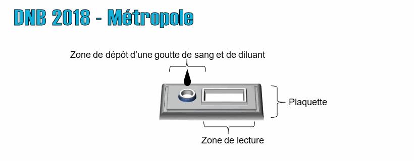 DNB 2018 – Métropole
