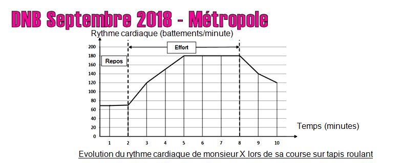 DNB Septembre 2018 – Métropole