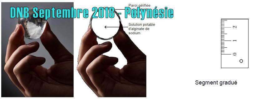 DNB Septembre 2018 – Polynésie