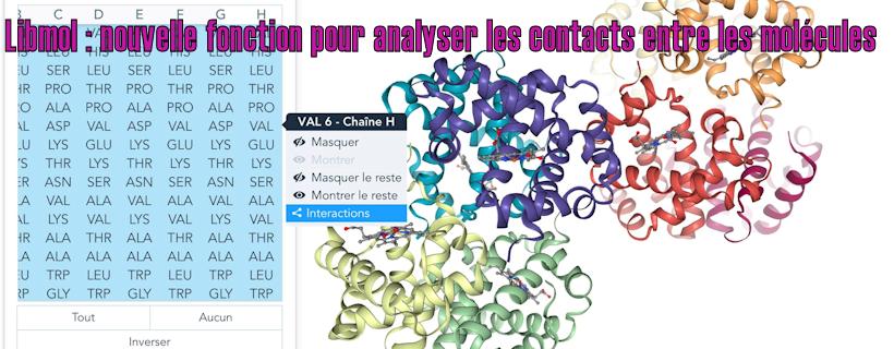 Libmol : nouvelle fonction pour analyser les contacts entre les molécules