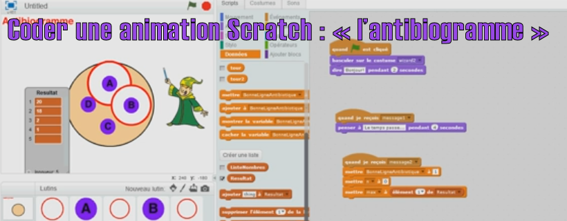 Coder une animation Scratch : « l'antibiogramme »