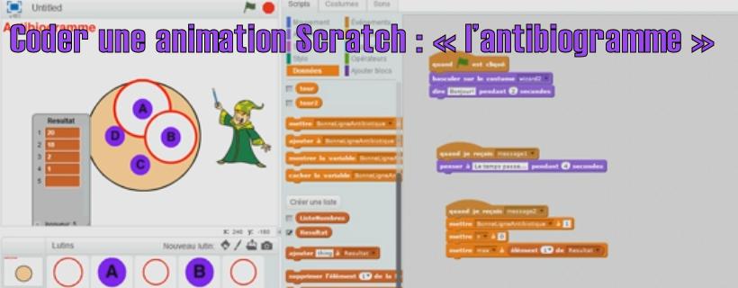 Coder une animation Scratch : «l'antibiogramme»