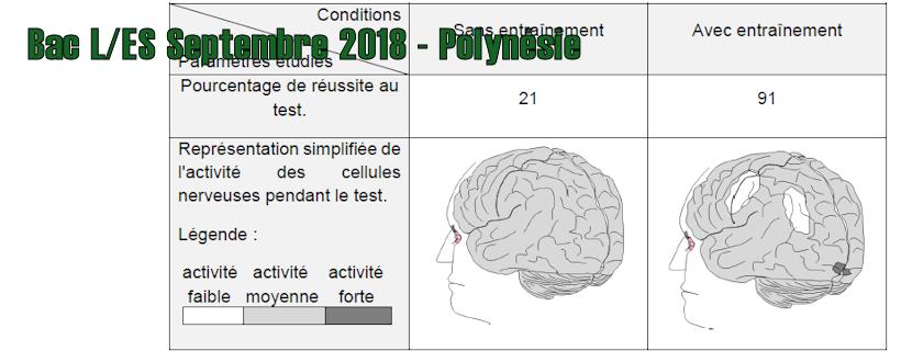 Bac ES/L Septembre 2018 – Polynésie