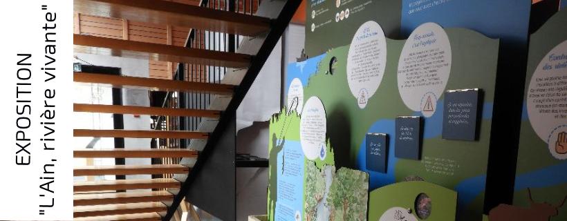 Visites guidées et commentées de l'exposition «L'Ain, rivière vivante»