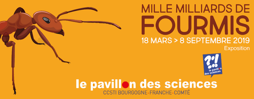 Exposition « Mille milliards de fourmis »