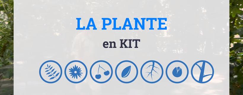 Série en vidéo «La Plante en Kit !»
